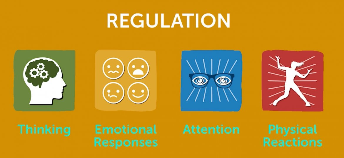 Regulation graphic